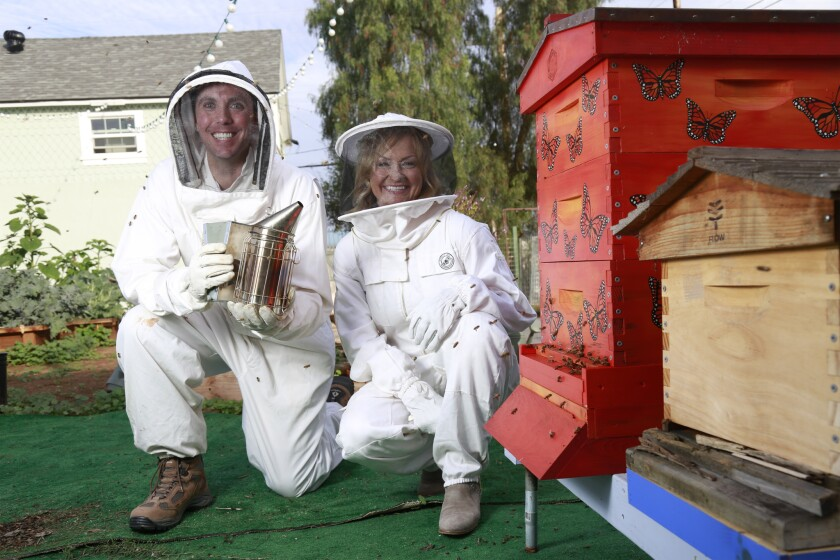 Katrina and Ian get up close and personal on their beehive tour at Girl Next Door Honey.