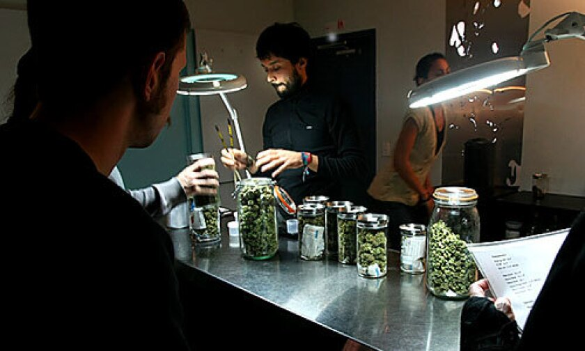Manwell Hernandez, an associate at the Cornerstone Collective medical marijuana dispensary serves customers from behind a stainless steel counter. Tall jars contain various kinds of dried marijuana buds that are sold only to qualified patients with a doctor's recommendation. At right, a patient reads the menu.