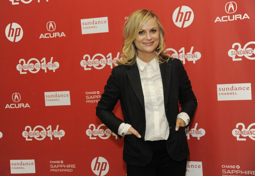 """Amy Poehler, a cast member in """"They Came Together,"""" at the film's premiere."""