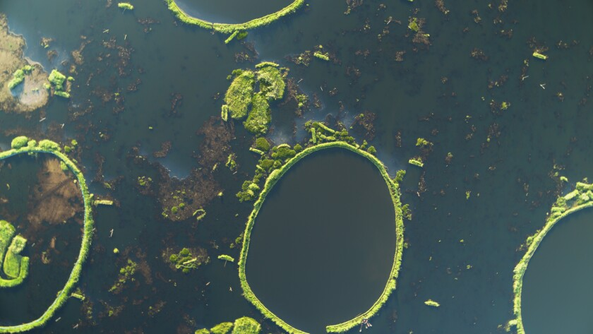 """This image released by National Geographic shows circular Phumdis floating atop Laktak Lake, the largest freshwater lake in northeast India, from the two-part special """"India From Above,"""" narrated by actor Dev Patel. (Abhik Wadhwa/National Geographic via AP)"""