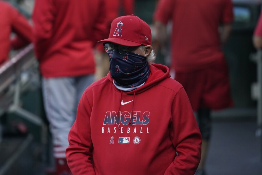 Angels manager Joe Maddon in the dugout before a game against the San Francisco Giants