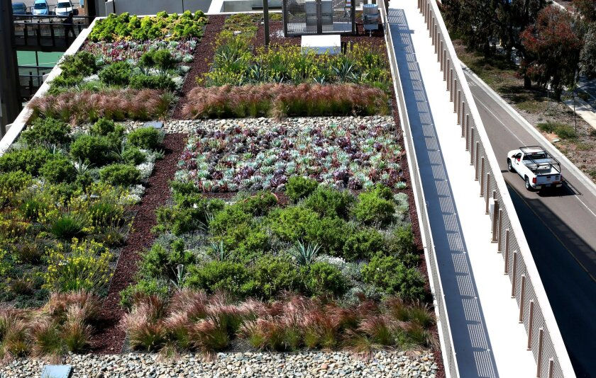 "Shasta Landscaping installed the ""green roof,"" which includes more than 4,000 drought-tolerant succulents, flowering plants and low-spreading shrubs."