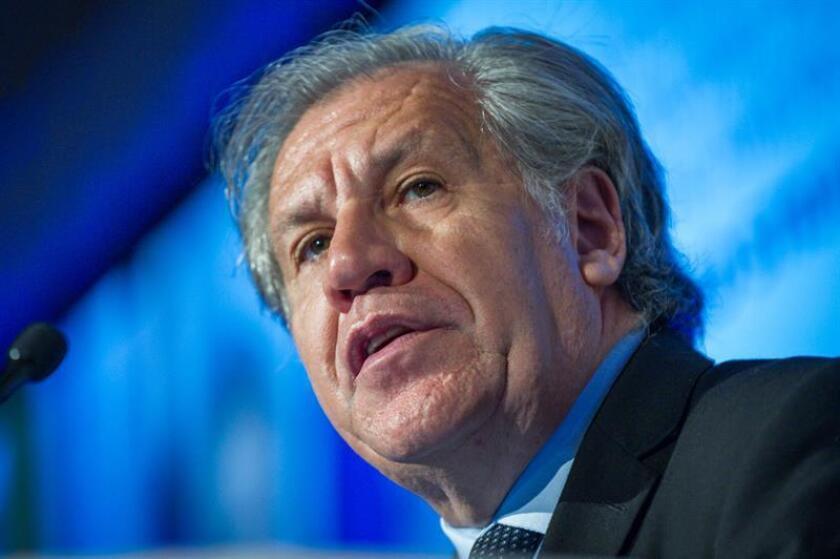 """La Organización de Estados Americanos (OEA) convocó para el próximo lunes a su Consejo Permanente para debatir en sesión extraordinaria """"la situación humanitaria"""" en Venezuela y """"su impacto en los países de la región"""", informaron fuentes diplomáticas a Efe. El secretario general de la OEA, Luis Almagro. EFE/ARCHIVO"""