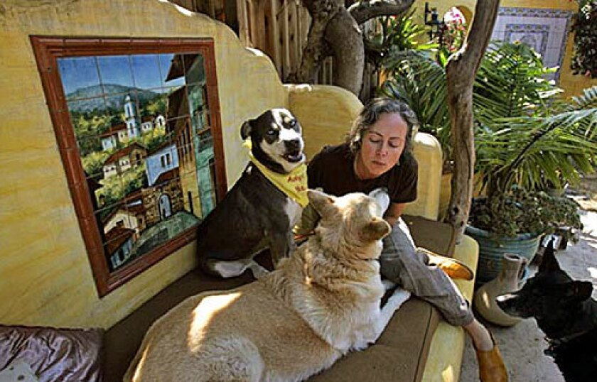 """""""People here seem to believe that because they are angry they don't have to be civil,"""" said Christine Peters, who runs an animal rescue group at her home. """"... From my perspective, we've lost a sense of community."""""""