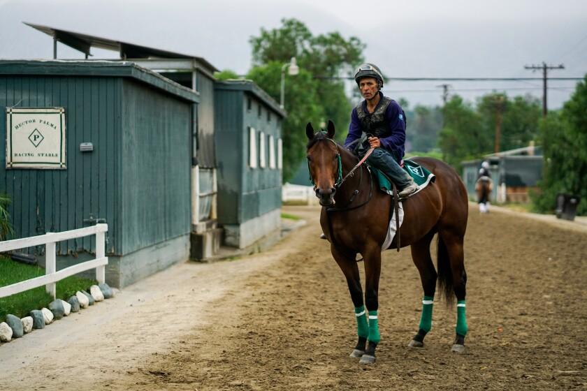 SANTA ANITA, CALIF. - JUNE 20: Rigoberto Cevilla, an exercise rider, on a horse outside of Hector Pa