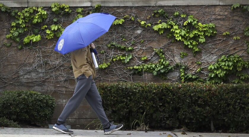 Southern California is preparing for rain expected to roll in to the area by Wednesday. In this May file photo, a pedestrian walks along Foothill Boulevard in La Crescenta under the cover of an umbrella during a rainstorm.