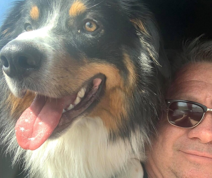 El Cajon Mayor Bill Wells and his English Shepherd, Doc Holiday, were involved in a single-vehicle crash the first week of April. Both mayor and dog are doing well at home, Wells said.