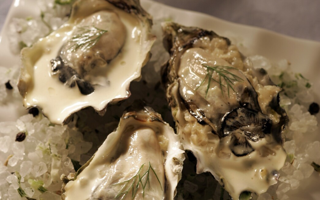 Roasted oysters with chipotle butter
