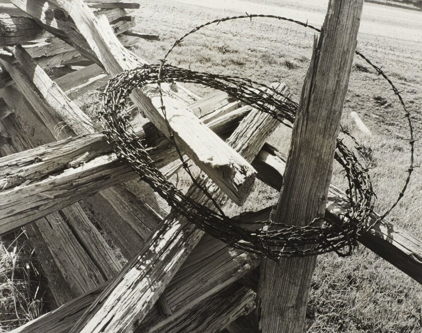 """A Getty Museum show of Minor White's work includes """"Cabbage Hill, Oregon (Grande Ronde Valley)"""" (1941), evoking a cross and crown of thorns."""