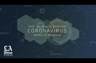 The Science Behind the Coronavirus, Series III: Mutations