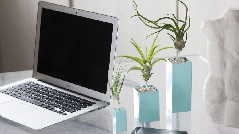 DESIGN PROBLEM: No-fuss, space-efficient desktop plants for the office SOLUTION: Multiple powder-co