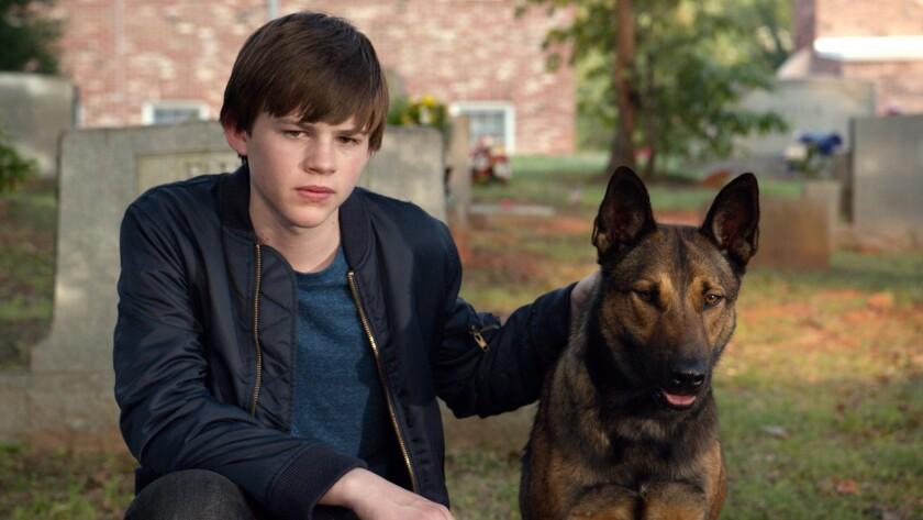 """Josh Wiggins in """"Max."""""""