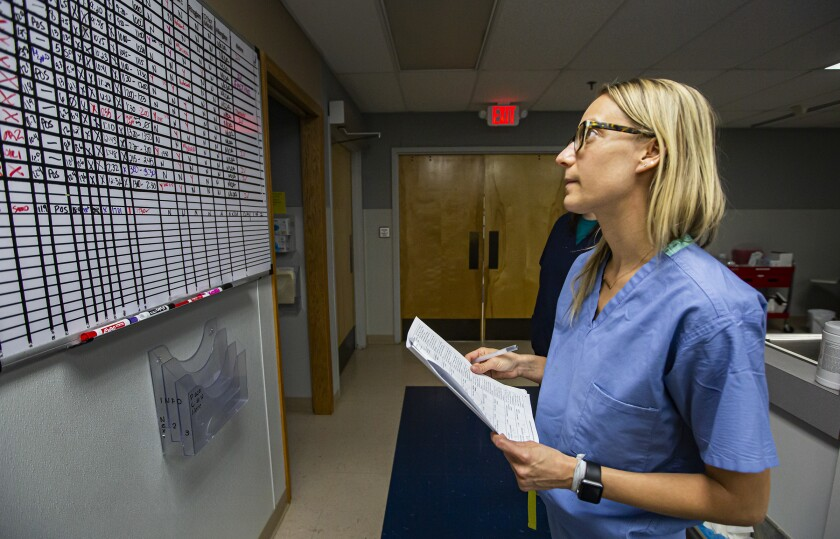 Dr. Angela Marchin checks a schedule on a whiteboard