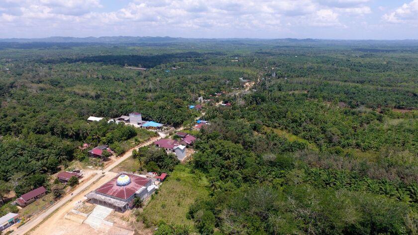 Aerial view of East Kalimantan, Sepaku, Indonesia