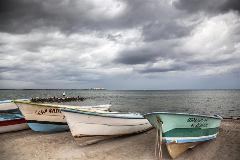 La tormenta tropical Tara se formó esta madrugada en el Pacífico frente a las costas de los estados de Colima y Michoacán, informó hoy el Servicio Meteorológico Nacional (SMN) de México. EFE/Archivo