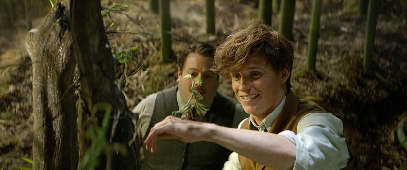 """Una escena de """"Fantastic Beasts and Where to Find Them"""", la nueva cinta de fantasía que se basa en una novela escrita por J.K. Rowling, autora de la saga literaria de Harry Potter."""