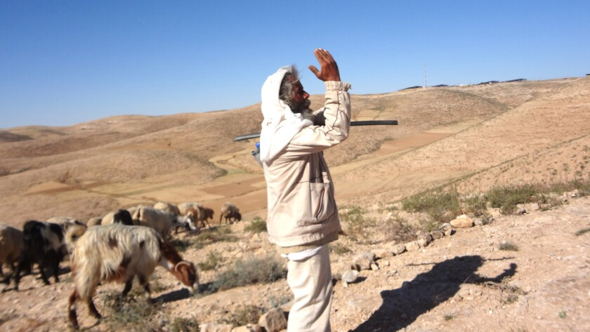 Suleiman, a shepherd, in the West Bank village of Umm al-Kheir. Ehrenreich's book includes photos he took while writing about Palestine.