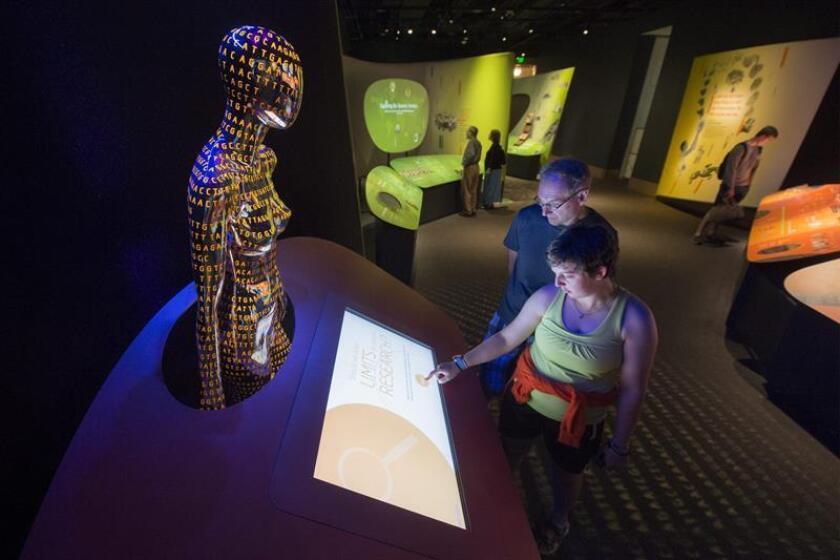 """Dos visitantes observan una figura con forma de torso de mujer y decorada con las letras iniciales de los cuatro nucleótidos que conforman el ADN que se exhibe en la exposición """"Genoma: descifrando el código de la vida"""", en el museo Smithsonian de Historia Natural en Washington DC (Estados Unidos). EFE/Archivo"""