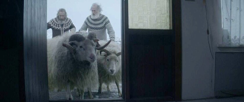 """Sigurour Sigurjonsson, left as Gumii and Theodor Julíusson as Kiddi, his brother, in the movie """"Rams."""""""