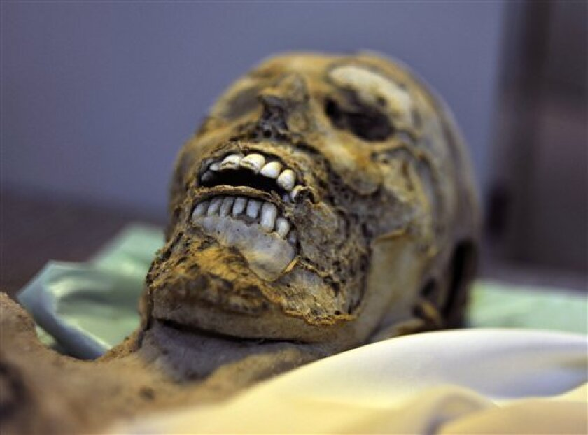 In this picture taken June 27, 2012 shows one of the 265 mummies which is resting in cardboard box in the Hungarian Natural History Museum in Budapest, Hungary. The naturally-preserved mummies were forgotten for hundreds of years and were discovered in 1994 during a church's renovation in the north
