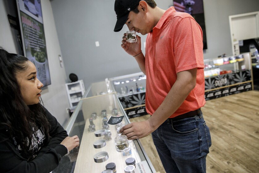 One year of legal pot sales and California doesn't have the bustling