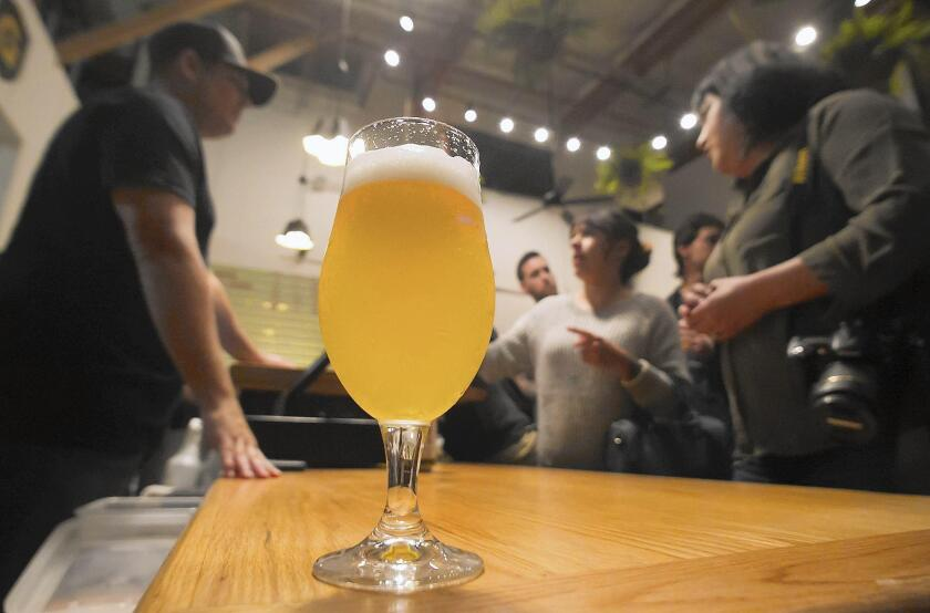 A freshly brewed beer, the Bait Ball, is served during Thursday's soft opening of the Gunwhale Ales microbrewery in Costa Mesa.
