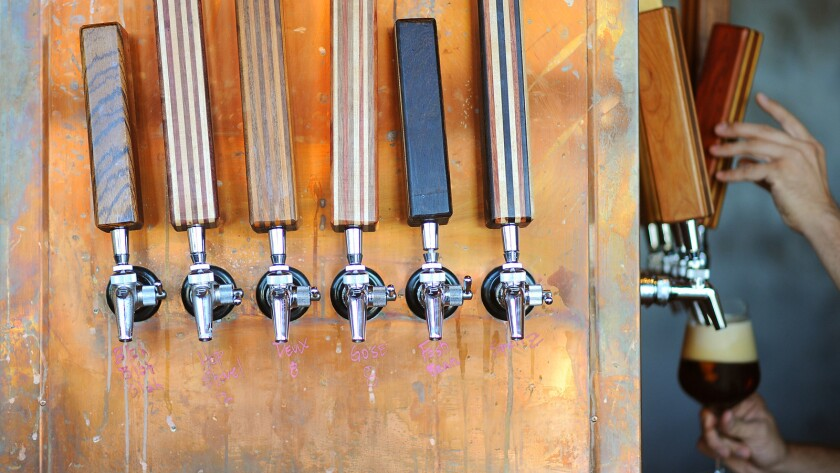 A beer is poured from one of the many taps at the Cannibal in Culver City.
