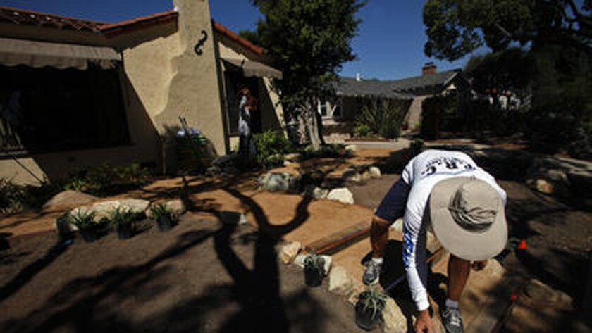 After removing his lawn, homeowner Brian Dines places drought-resistant plants in the frontyard of his Long Beach home.
