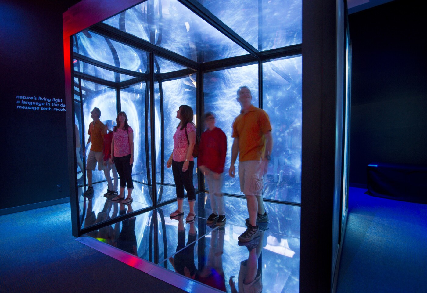Visitors to the Birch Aquarium stand inside the Infinity Cube, a new exhibit featuring an 8-foot cube that surrounds guests in projected and reflected larger-than-life images of bioluminescence, which is light produced by living organisms in the marine environment.