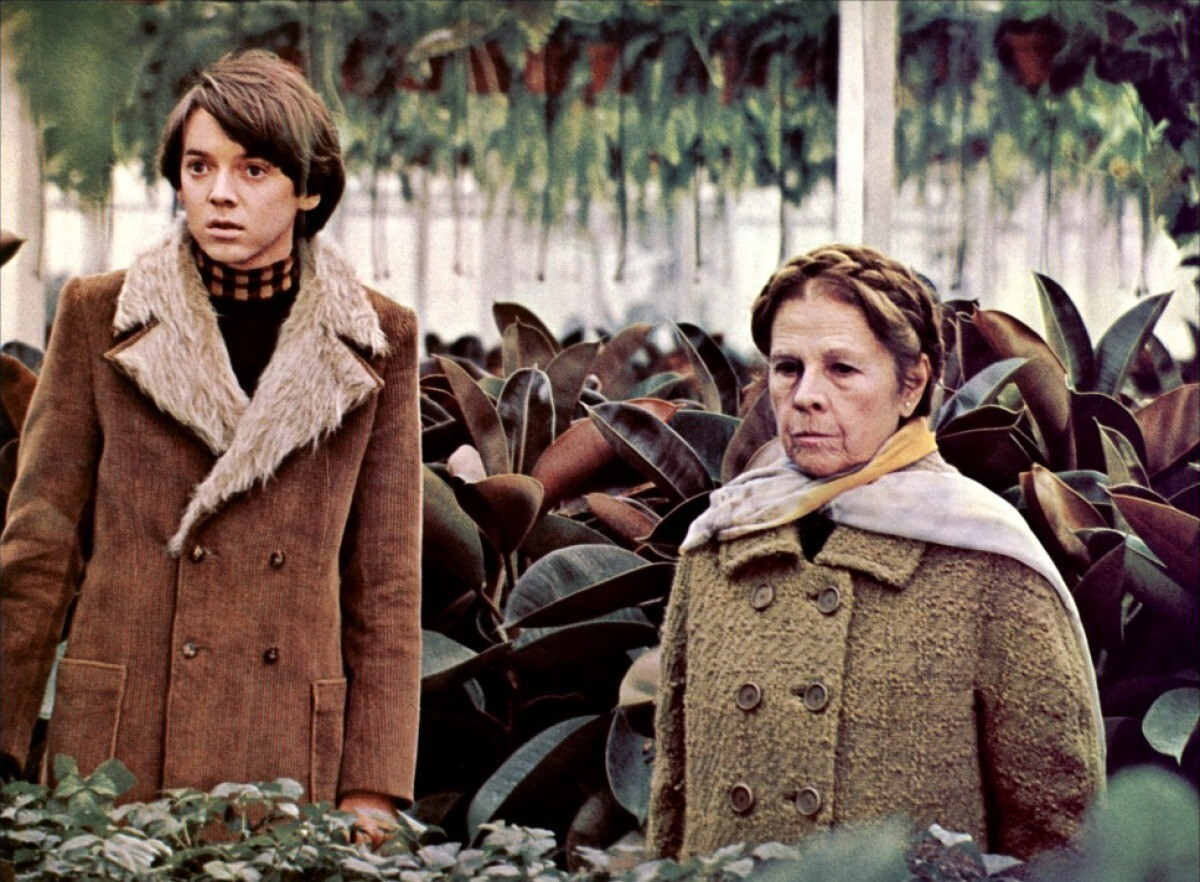 Harold and Maude will be screened during Flicks on the Bricks. (Courtesy photo)