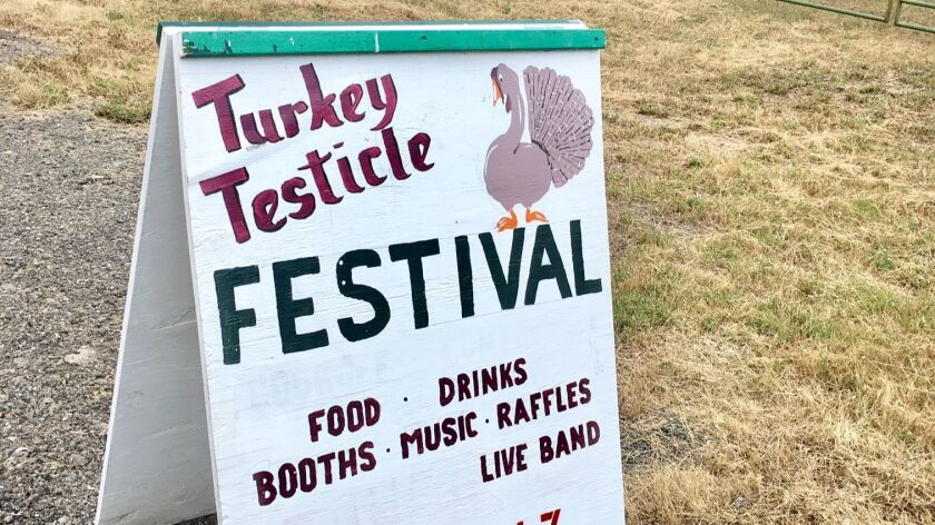The Turkey Testicle Festival is the biggest social event of the year in Dunlap, Calif.