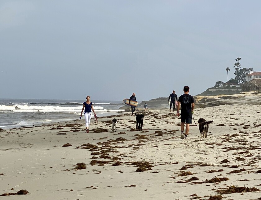 People stroll along Windansea beach in La Jolla the morning of April 27 after the beach was reopened for swimming, surfing, walking, jogging, and single-person paddleboarding and kayaking.