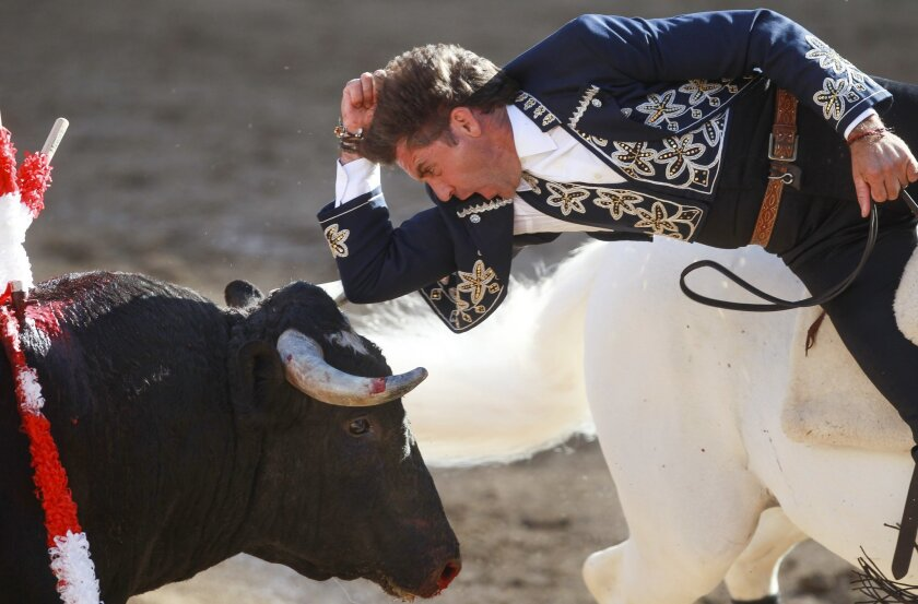 Matador Pablo Hermoso touches a bull's head with his elbow as he fights the bull on horseback.