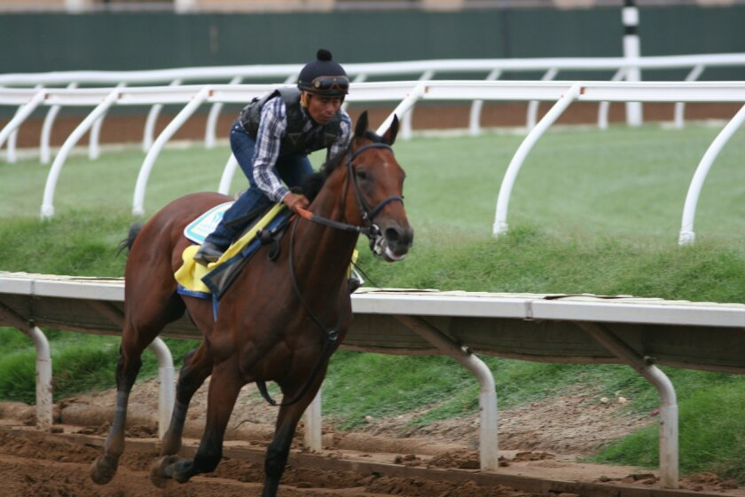 American Pharoah gets in final work at Del Mar before shipping Wednesday to New Jersey to run in the Haskell Invitational Sunday at Monmouth Park.
