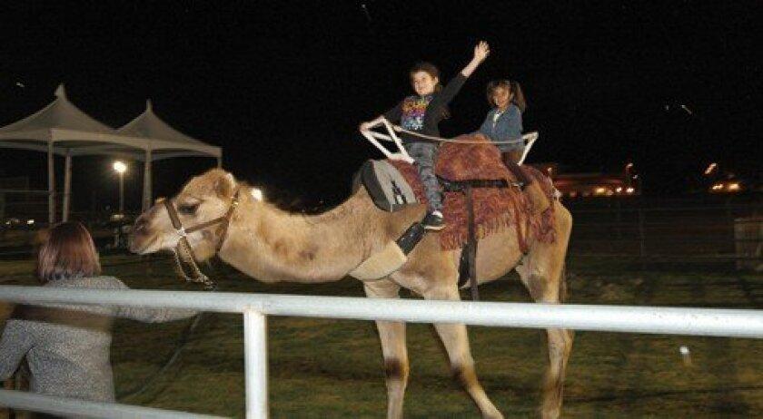 Riley Cooley and Leah Rahman ride the camel. Photo: Jon Clark