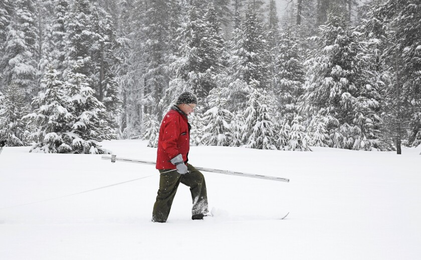 Frank Gehrke of the California Department of Water Resources surveys the snowpack at Phillips Station near Echo Summit, Calif.