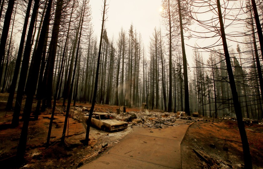 The Caldor fire leaves a moonscape of burned forest, homes and vehicles in Grizzly Flats.