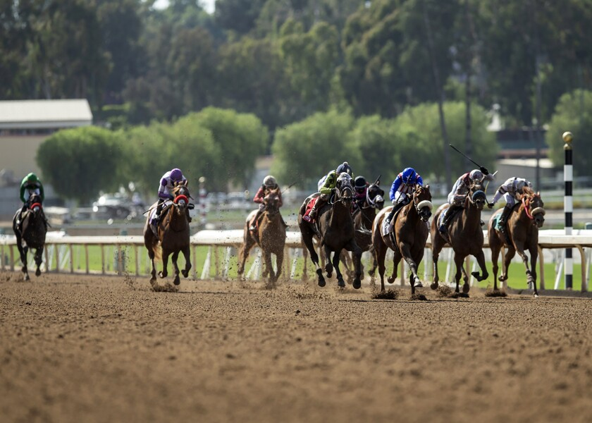 Smiling Shirlee, fourth from left, with Mike Smith aboard, wins the $150,000 Evening Jewel Stakes horse race on Saturday at Santa Anita Park.