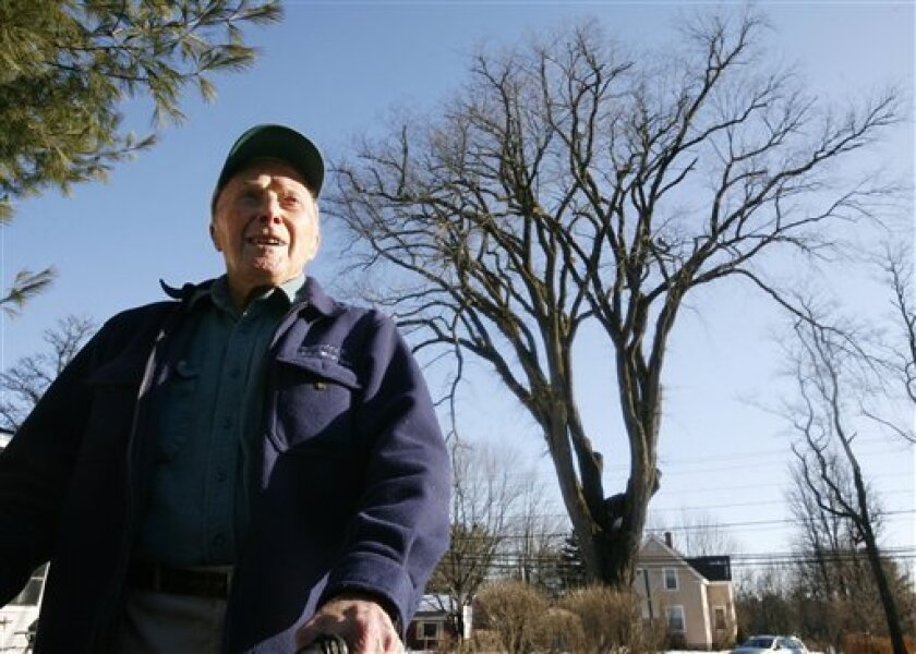 """In this Monday, Dec. 14, 2009 photo Frank Knight, 101, of Yarmouth, Maine, stands in front of an elm tree known as """"Herbie"""" in Yarmouth. Knight, who is recently retired, took care of the tree for about 50 years while working as the Yarmouth tree warden. The tree, estimated to be over 225 years old and scheduled to be cut down on Martin Luther King Day Jan. 18, 2009, has suffered numerous bouts of Dutch elm disease. (AP Photo/Steven Senne)"""