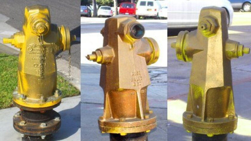 At least eight fire hydrants throughout La Jolla Village, including Coast Boulevard and Nautilus Street,have been vandalized and painted gold. Photos by Ashley Mackin