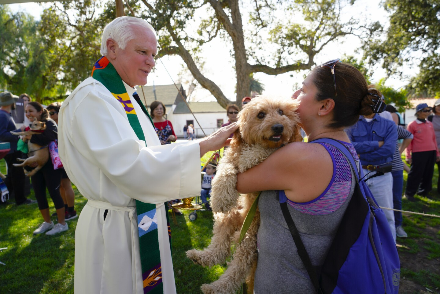 Rev. Michael J. Sinor from Immaculate Conception Church in Old Town blessed Mary Perlaki-NeeoyÕs dog, Koufax annual Blessing of the Animals during the Fiesta De Reyes in Old Town on Sunday.
