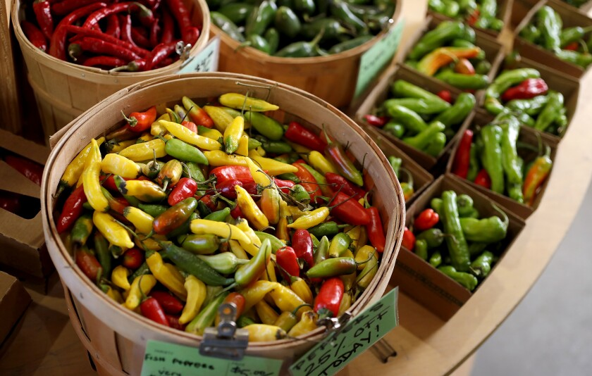 A variety of hot peppers at the Farm Stand in the Ecology Center in San Juan Capistrano.