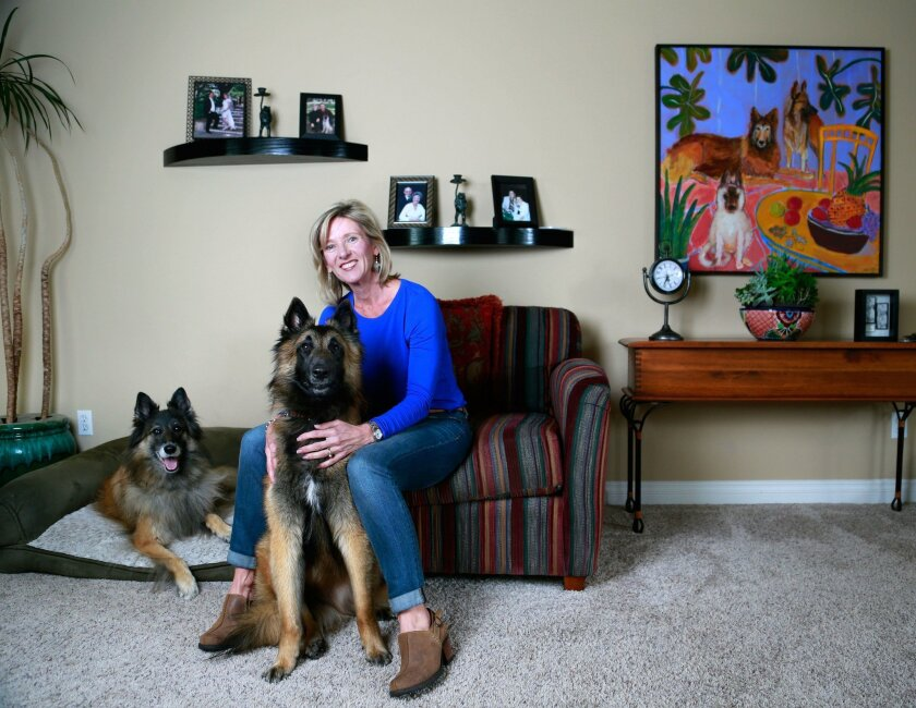 """Certified dog trainer Laura Christiansen at her Carlsbad home with her two Belgian Tervuren, Grace, left, and Caden, right. Christiansen was named """"National Trainer of the Year at the 61st annual Show Dogs of the Year Awards in New York."""