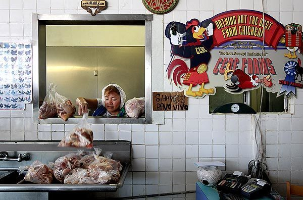 Josefina Martinez tosses bags of chicken for sale at Al Salam Polleria in Los Angeles. The butcher shop, started by Muslim Egyptian immigrants in 1984, sells freshly butchered poultry killed according to religious law, called halal.