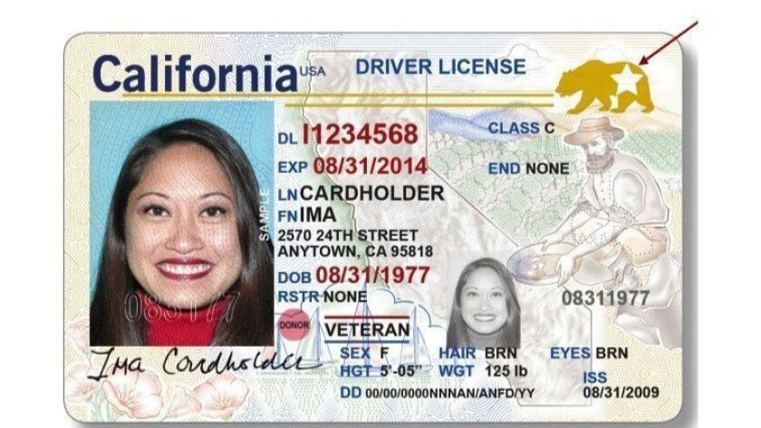 A sample Real ID license. The bear and star in the upper right signifies that it complies with federal standards for driver's licenses.