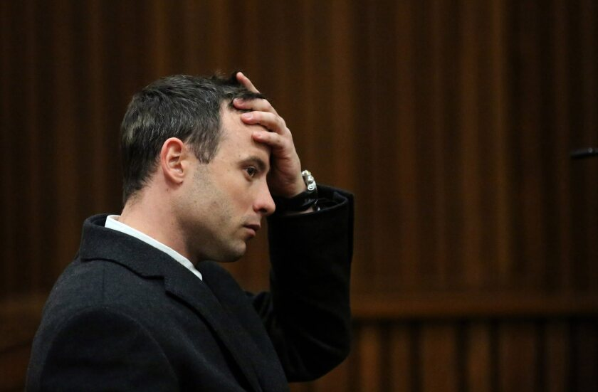 Oscar Pistorius murder trial continues