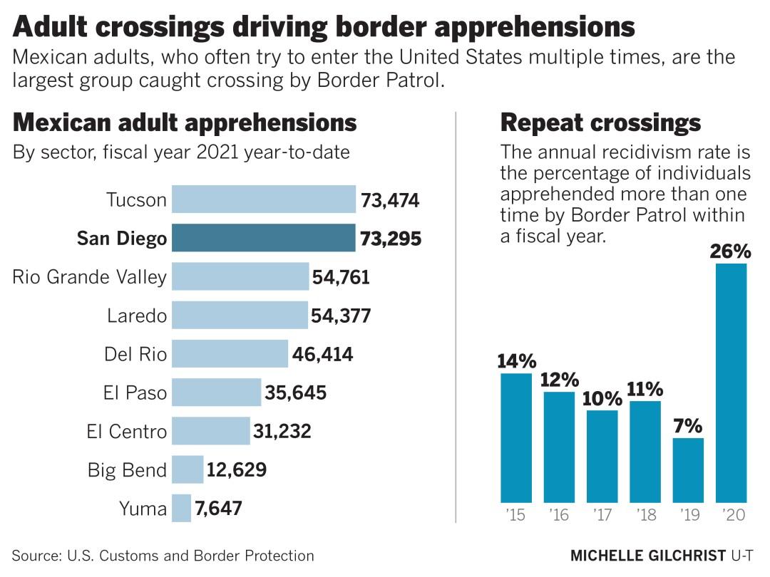 Adult crossing driving border apprehensions