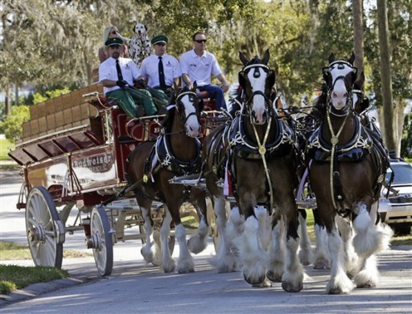 In this image provided by HHP Photo, NASCAR driver Kevin Harvick, top right, and Budweiser Clydesdales ride on the way to deliver beer and Daytona 500 tickets to Justin Ryter and Jason Ryter, twin brothers who completed four years of active duty in the United States Marine Crops and recently returned home, Wednesday, Feb. 20, 2013, in Daytona Beach, Fla. (AP Photo/HHP Photo, Harold Hinson) MANDATORY CREDIT; NO SALES