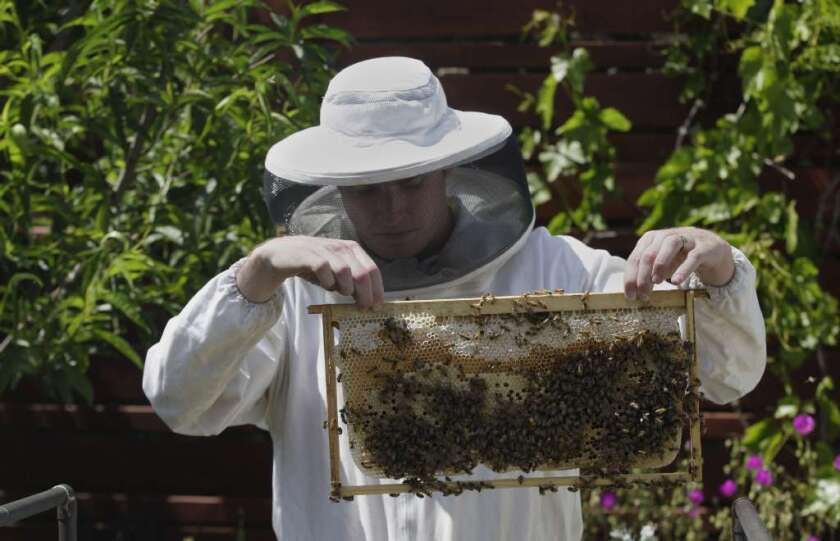 Rob McFarland holds a beehive at a Culver City residence in 2012.