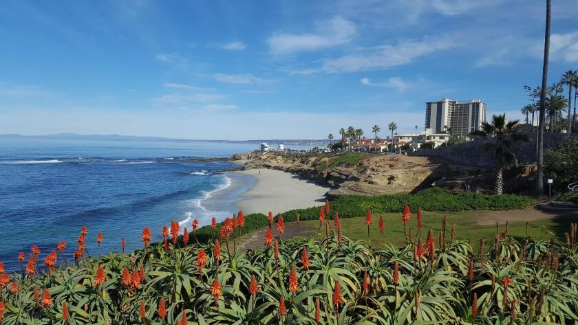 The vista at Whale View Point in La Jolla